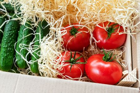 Wooden and cardboard crate box with fresh ripe tasty red tomatoes and green cucumbers with wood shavings filler delivered by unmanned shipping postage mail service. Farmers selected bio vegetables