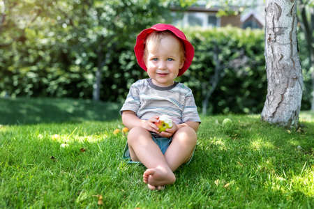 Cute adorable 2 years old caucasian blond toddler boy enjoy eating juicy sweet tasty apple fruit sitting on green grass lawn in park, garden or home yard. Happy careless carefree childhood concept 免版税图像