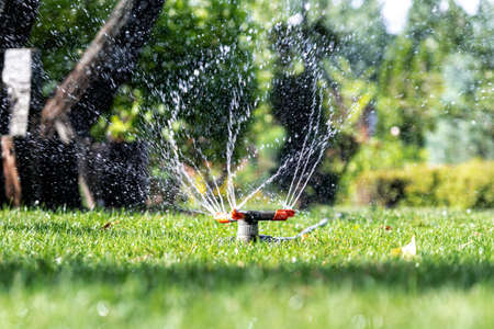 Landscape automatic garden watering system with different rotating sprinklers installed on turf. Landscape design with lawn and fruit garden irrigated with smart autonomous sprayers at sunset time Archivio Fotografico