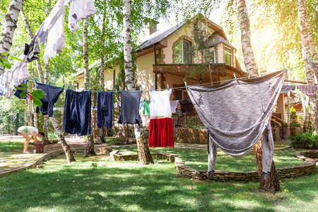 Domestic real life scene of many children and adult fresh clean washed clothes hanged on birch tree clothesline with pins. Home yard on bright sunny summer day outdoors. Lifestyle backyard garden