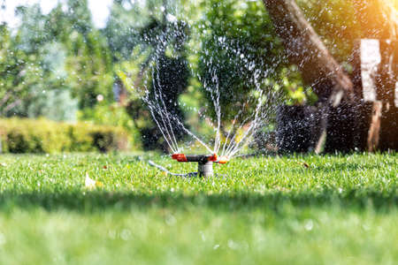 Landscape automatic garden watering system with different rotating sprinklers installed on turf. Landscape design with lawn and fruit garden irrigated with smart autonomous sprayers at sunset time