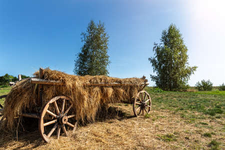 Old vintage rustic wooden ancient cart carriage with hay pile on green grass meadow field against clear blue sky on bright sunny day. Scenic rural countryside landscape with aged transport farm ranch Stockfoto