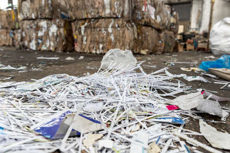 Dump pile of used shreded paper wrap and document against bales of compressed cardboard collected for recycling and reuse at industrial plant or factory. Sustainable materials and environment concept