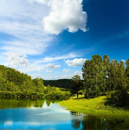 pantanos: Paisaje de verano con lago Foto de archivo