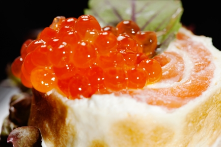 Canape with salmon Stock Photo - 14297932