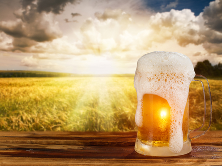 snowy field: cold mug of beer in a landscape Stock Photo