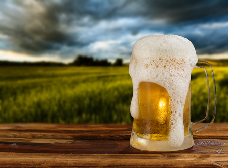 brewery: cold mug of beer in a landscape Stock Photo