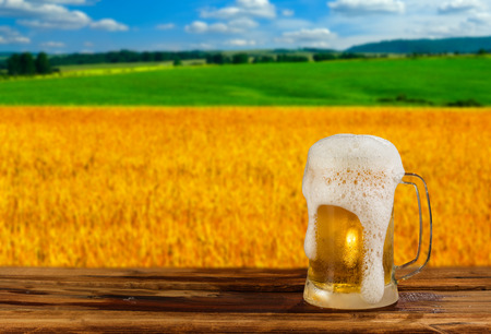cold mug of beer in a landscape Stock Photo