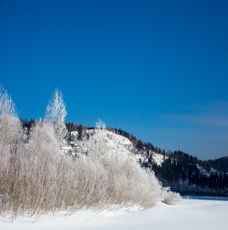 Winter landscape. Stock Photo