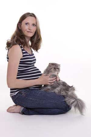 pregnant jeans: Pregnant woman with persian cat, studio shot on white background