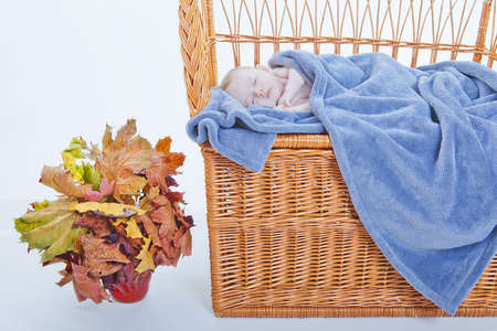 withe: Slipping baby on Vinewoven bench near vase with leaves