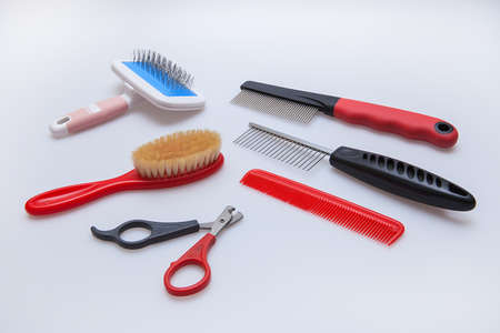 acessories for the grooming and nail clipper for cats and dogs photo