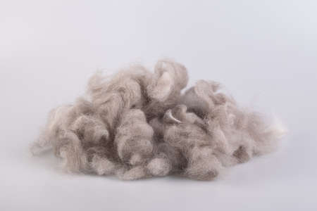 Persian cat raw wool yarn coiled into a ball on white background Stok Fotoğraf