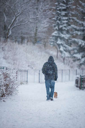 citypark: Man and dog blurred by massive snowfall in citypark
