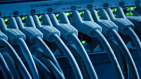 Macro Shot: Data Cables Connected to Router Ports with Blinking Lights. Telecommunications: RJ45 Internet Connectors Plugged into Modem LAN Switches. Secure Data Center System Working