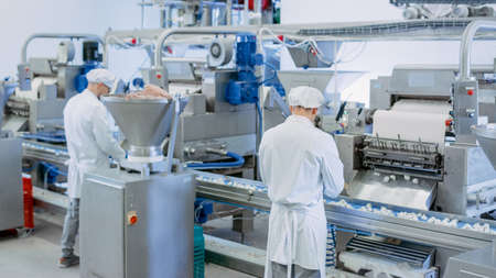Two Young Male Food Conveyor Belt Employees Work at a Dumpling Factory. They Stand with Their Backs to Camera and Produce Manual Labour on the Line. They Wear White Sanitary Hats and Work Robes.