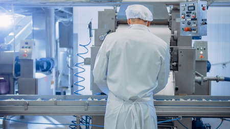 Young Male Food Conveyor Belt Employee Works at a Dumpling Factory. He Stands with His Back to Camera and Produce Manual Labour on the Line. He Wears White Sanitary Hat and Work Robe. Foto de archivo