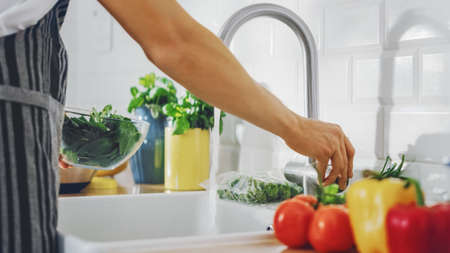 Close Up Shot of a Man Washing Green Spinach Leaves with Tap Water. Authentic Stylish Kitchen with Healthy Vegetables. Natural Clean Products from Organic Farming Washed by Hand.