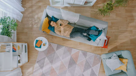 Young Man in Brown Jumper and Grey Jeans Comes and Lies Down on a Couch, Using a Smartphone. He is Happy and Smiles. Cozy Living Room with Modern Interior with Plants, Table and Wooden Floor. Top Down