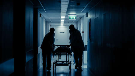 Emergency Department: Silhouettes of Doctors, Nurses and Paramedics Run and Push Gurney Stretcher with Seriously Injured Patient towards the Operating Room. Modern Hospital with Professional Staff. Stock fotó