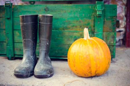 Picture of black gumboots standing beside pumpkin in barn. Autumn closeup with green aged wooden box on blurred countryside background.