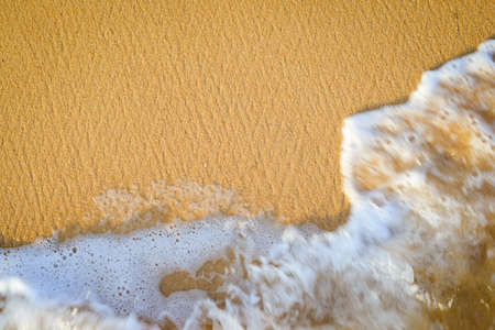 gentle dream vacation: Picture of seaside with golden sand and surf. Top view of sunny beach with sea wave as joyful relax background.