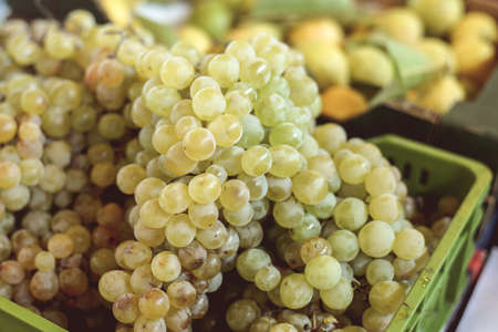 lug: Closeup photo of juicy white ripe grape bunches in plastic lug box standing on market stand