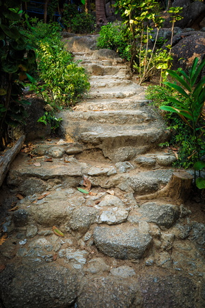 Stone stairs in the jungle in Thailand