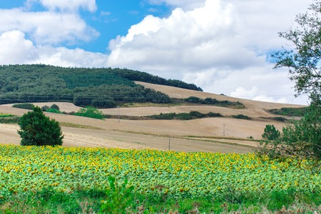 Picturesque landscape of Spain with cloudy sky
