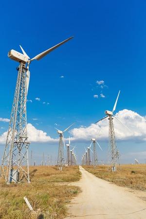 Windmills in a field Standard-Bild