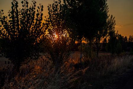 Amazing sunrise on camino Фото со стока