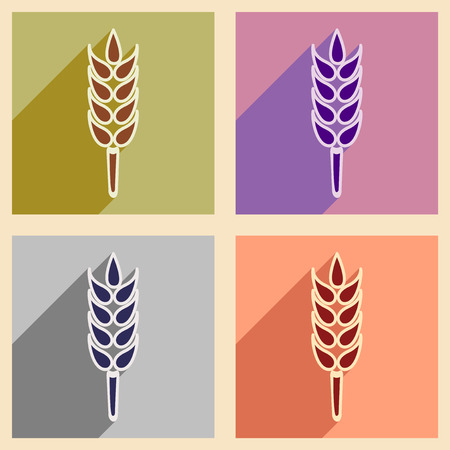 ear of wheat: Flat with shadow concept and mobile application ear wheat Illustration