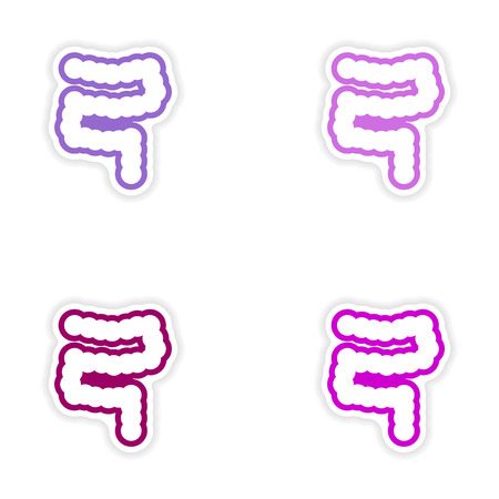 transverse colon: Set of paper stickers on white background human intestine