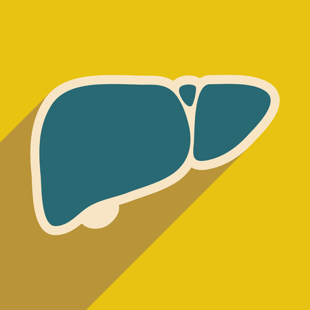 hepatic portal vein: Icon of human liver in flat style