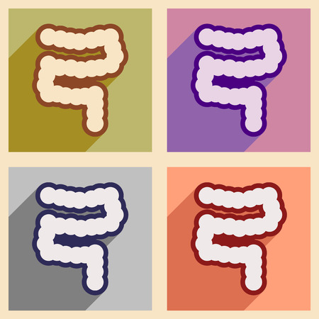 duodenum: Icons of assembly duodenum in flat style