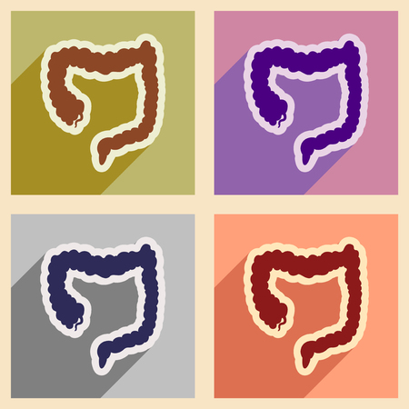 oesophagus: Icons of assembly duodenum in flat style