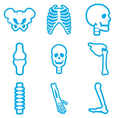 tibia: Set flat icons with long shadow human skeleton