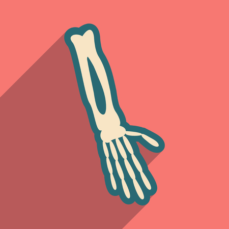 wrist joint: flat icon with long shadow bones of human hand Illustration