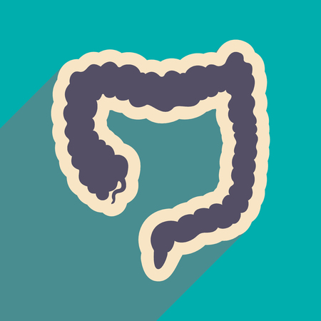 transverse: Icon of human duodenum in flat style Illustration