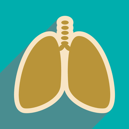 bronchi: Icon of human lungs in flat style