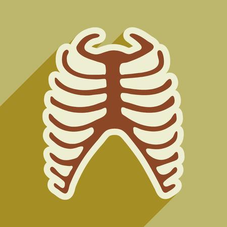 rib: flat icon with long shadow human rib Illustration