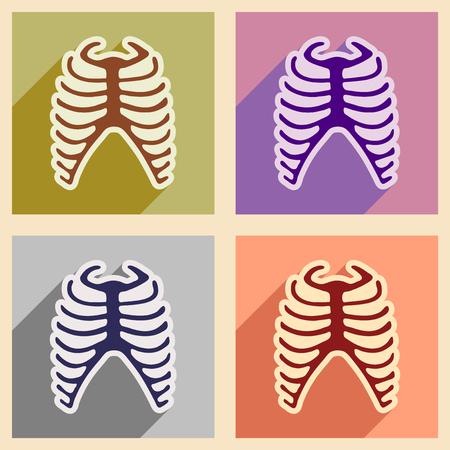 rib: Set flat icons with long shadow human rib Illustration