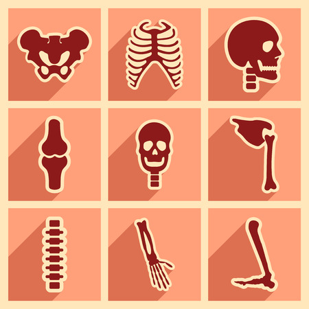 skeleton hand: Set flat icons with long shadow human skeleton