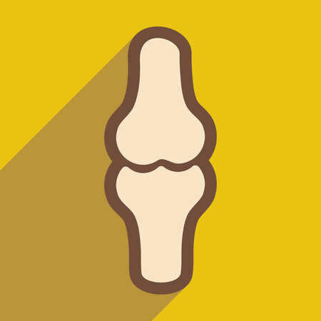 spongy: flat icon with long shadow human bone