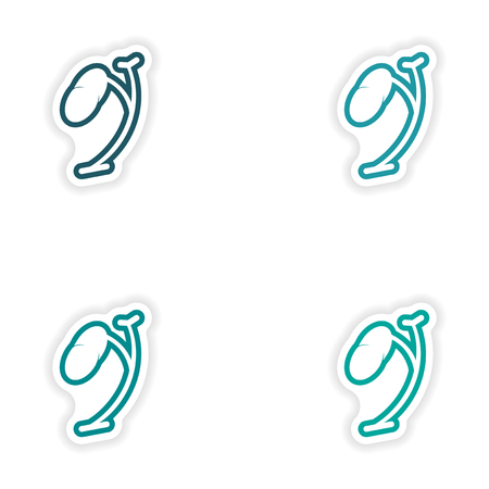 Set of paper stickers on white background spleen Illustration