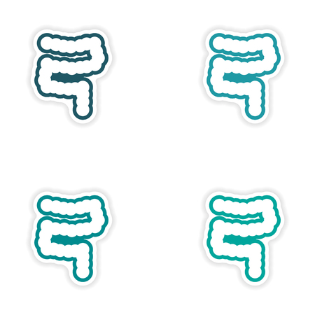 rectum: Set of paper stickers on white background human intestine