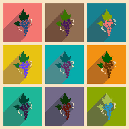 peasant household: Set of flat web icons with long shadow bunch of grapes Illustration
