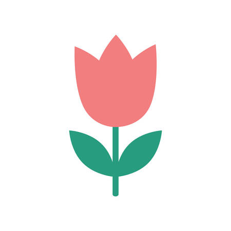 blooms: flat icon on  white background  tulip blooms Illustration