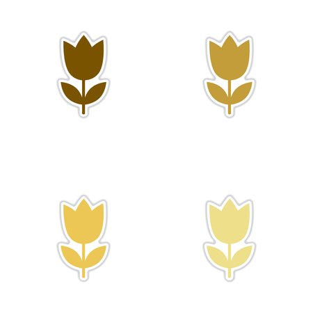 blooms: Concept of paper stickers on white  background tulip blooms