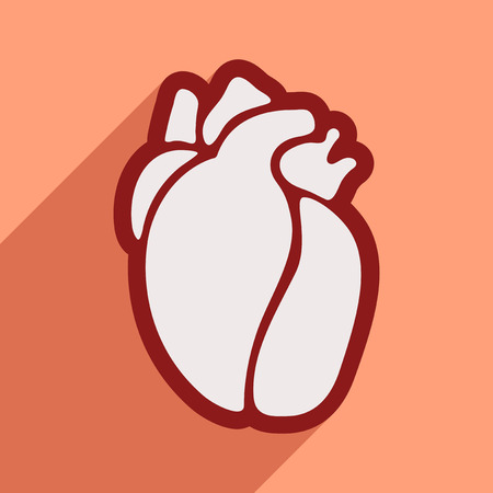 ventricle: Icon of in human heart flat style